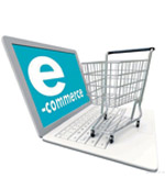 Shopping Cart Website Developer in Chennai